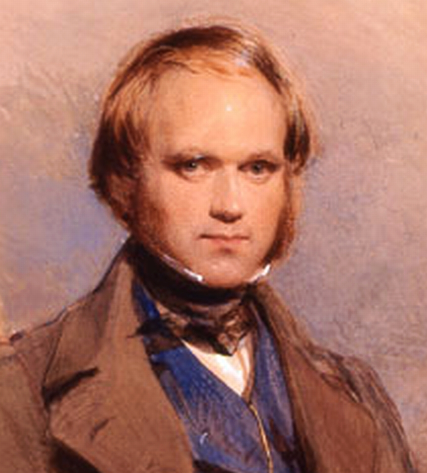 essays on charles darwin